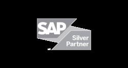Logotip Sap Silver Partner